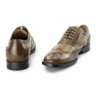 Azor CRESTO Mens Leather Oxford Brogues Tan