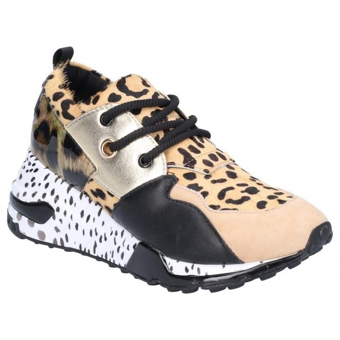 936ad9b38294 Steve Madden CLIFF Ladies Leather/Pony Fashion Trainers Animal | Shuperb